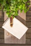 Αντικείμενα σαουνών στον ξύλινο πάγκο από την κορυφή Στοκ Φωτογραφία