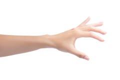 Αντικείμενο εκμετάλλευσης χεριών γυναικών στοκ φωτογραφίες