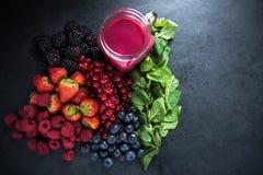 Αντιοξειδωτικό όλος ο καταφερτζής φρούτων μούρων Στοκ Εικόνες
