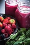 Αντιοξειδωτικό όλος ο καταφερτζής φρούτων μούρων Στοκ Εικόνα