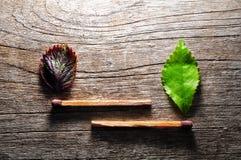 Αντιστοιχία με ένα φύλλο λουρίδων στο ξύλινο υπόβαθρο στοκ φωτογραφία με δικαίωμα ελεύθερης χρήσης