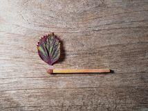 Αντιστοιχία με ένα φύλλο λουρίδων στο ξύλινο υπόβαθρο στοκ φωτογραφίες με δικαίωμα ελεύθερης χρήσης