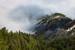 Αντιστροφή σύννεφων πέρα από το δάσος πεύκων Στοκ φωτογραφία με δικαίωμα ελεύθερης χρήσης