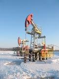 αντλία πετρελαίου γρύλων Στοκ φωτογραφία με δικαίωμα ελεύθερης χρήσης