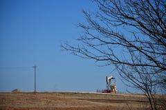 Αντλία πετρελαίου πίσω από τα κλαδιά δέντρων Στοκ Εικόνες