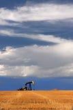 αντλία Ρωσία Σιβηρία πετρελαίου γρύλων εξαγωγής δυτική Στοκ εικόνες με δικαίωμα ελεύθερης χρήσης