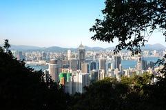 Ανυψωμένη άποψη του κεντρικού ουρανοξύστη Plaza και των κτηρίων ωχρού Chai, Χονγκ Κονγκ Στοκ εικόνα με δικαίωμα ελεύθερης χρήσης