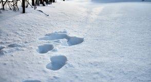Ανώμαλη επιφάνεια του ραγισμένου πάγου φωτισμού και των σκιών σύστασης αντίθεσης κρουστών πλήρους Ανθρώπινα ίχνη στον τομέα χιονι Στοκ Εικόνες