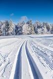 Ανώμαλη να κάνει σκι διαδρομή στο χειμερινό τοπίο Στοκ Φωτογραφία