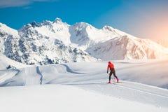 Ανώμαλη να κάνει σκι κλασική τεχνική που ασκείται από το άτομο Στοκ Εικόνα