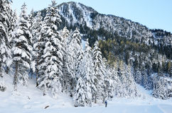 Ανώμαλο να κάνει σκι στην κοιλάδα Marcadau Στοκ φωτογραφίες με δικαίωμα ελεύθερης χρήσης