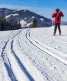 Ανώμαλο να κάνει σκι στις Άλπεις Στοκ εικόνα με δικαίωμα ελεύθερης χρήσης