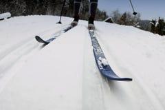 Ανώμαλο να κάνει σκι Στοκ Φωτογραφίες