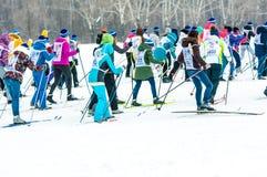Ανώμαλο να κάνει σκι, Στοκ φωτογραφία με δικαίωμα ελεύθερης χρήσης