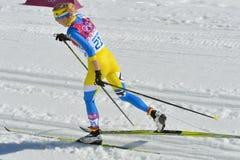 Ανώμαλο σκι Στοκ Φωτογραφία