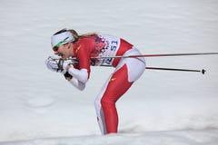 Ανώμαλο σκι Στοκ Εικόνα