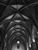 ανώτατο όριο θολωτό Στοκ Φωτογραφίες