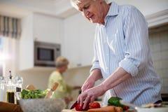 Ανώτερα τέμνοντα λαχανικά ατόμων για τη σαλάτα Στοκ εικόνες με δικαίωμα ελεύθερης χρήσης