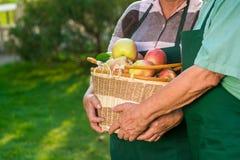 Ανώτερα χέρια που κρατούν το καλάθι μήλων Στοκ Εικόνες