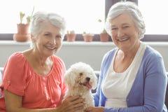 Ανώτερες γυναίκες που κτυπούν ένα σκυλί Στοκ εικόνες με δικαίωμα ελεύθερης χρήσης