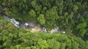 Ανώτερη βαθιά στενή κοιλάδα άποψης με το φαράγγι μεταξύ της ζούγκλας απόθεμα βίντεο
