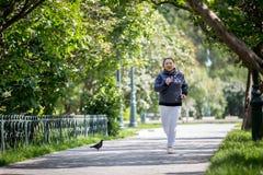Ανώτερη γυναίκα που κάνει τον αθλητισμό στο πάρκο στοκ εικόνες