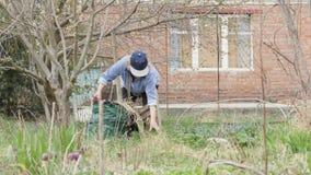Ανώτερη γυναίκα που καθαρίζει την ξηρά χλόη ενώ εργασία κηπουρικής στο κατώφλι κήπων απόθεμα βίντεο