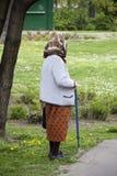 Ανώτερη γυναίκα Στοκ φωτογραφία με δικαίωμα ελεύθερης χρήσης