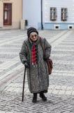ανώτερη γυναίκα Στοκ Εικόνα
