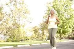 Ανώτερη γυναίκα Jogging στο πάρκο Στοκ εικόνες με δικαίωμα ελεύθερης χρήσης