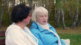 Ανώτερη συνεδρίαση γυναικών δύο στον πάγκο και ομιλία στο πάρκο φθινοπώρου απόθεμα βίντεο