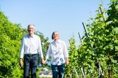 Ανώτεροι γυναίκα και άνδρας που έχουν τον περίπατο το καλοκαίρι Στοκ Φωτογραφίες