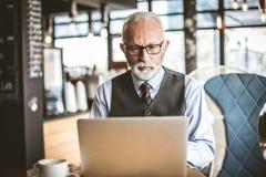 Ανώτεροι επιχειρηματίες που εργάζονται στο lap-top Πορτρέτο στοκ φωτογραφία