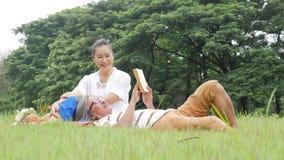 Ανώτεροι ζεύγος, σύζυγος και σύζυγος που κάνουν το πικ-νίκ στο πάρκο που στηρίζεται με την ευτυχή συγκίνηση απόθεμα βίντεο