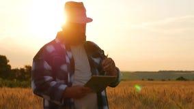 Ανώτερος αγρότης που στέκεται σε έναν τομέα σίτου με μια ταμπλέτα Αρσενικός αγρότης γεωπόνων με τον ψηφιακό υπολογιστή ταμπλετών  απόθεμα βίντεο