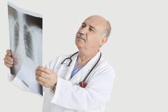 Ανώτερος αρσενικός γιατρός που εξετάζει την ιατρική ακτηνογραφία πέρα από το γκρίζο υπόβαθρο Στοκ φωτογραφία με δικαίωμα ελεύθερης χρήσης