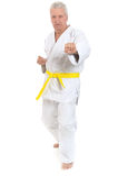 Ανώτερο άτομο karate Στοκ φωτογραφία με δικαίωμα ελεύθερης χρήσης