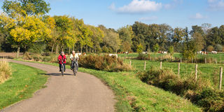 Ανώτερο ζεύγος σε ένα ποδήλατο Στοκ Εικόνες