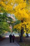 Ανώτερο ζεύγος στο πάρκο Στοκ φωτογραφία με δικαίωμα ελεύθερης χρήσης