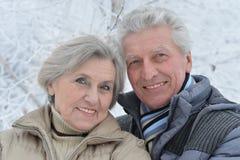Ανώτερο ζεύγος το χειμώνα στοκ εικόνα με δικαίωμα ελεύθερης χρήσης