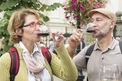 Ανώτερο δοκιμάζοντας κρασί ζευγών Στοκ Φωτογραφίες