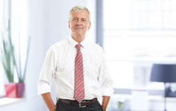 Ανώτερο πορτρέτο επιχειρηματιών Στοκ εικόνα με δικαίωμα ελεύθερης χρήσης