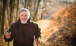 Ανώτερο σκανδιναβικό περπάτημα ατόμων στοκ φωτογραφίες