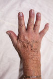 Ανώτερο χέρι Στοκ εικόνα με δικαίωμα ελεύθερης χρήσης