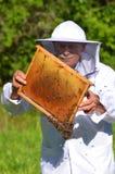 Ανώτερο apiarist που κάνει την επιθεώρηση στο μελισσουργείο Στοκ εικόνες με δικαίωμα ελεύθερης χρήσης