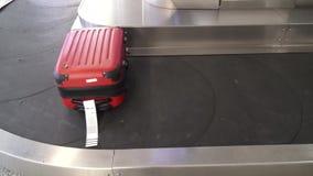 Αξίωση αποσκευών, αποσκευές και βαλίτσες, τσάντες απόθεμα βίντεο