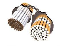 Απαγόρευση του καπνίσματος Στοκ Εικόνες