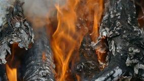 Απανθρακωμένος συνδέεται το σε αργή κίνηση βίντεο πυρκαγιάς απόθεμα βίντεο