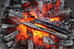 απανθρακωμένο δάσος Στοκ εικόνες με δικαίωμα ελεύθερης χρήσης