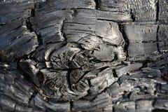Απανθρακωμένο κούτσουρο Στοκ Φωτογραφίες